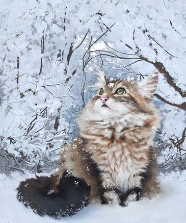 Фото Кошка сидит на снегу