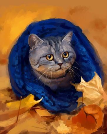 Фото Кот в синем шарфике, by SalamanDra-S