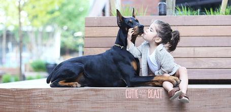 Фото Девочка целует своего лучшего друга - добермана, bу Siena Prucha