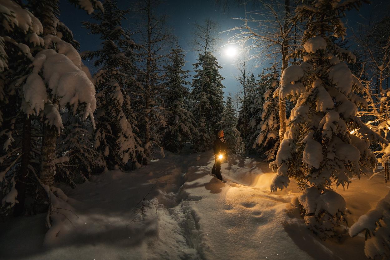 Фото Мальчик с фонарем в зимнем лесу, работа Один в темноте, фотограф Истомин Виталий