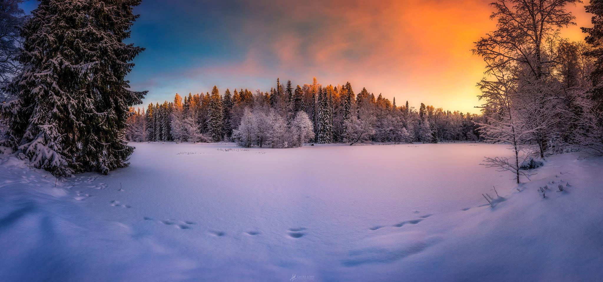 Красивый зимний утренний рассвет на Aulanko Nature reserve, HГ¤meenlinna, Finland / Ауланко заповедник, Хямеенлинна, Финляндия, ву Lauri Lohi