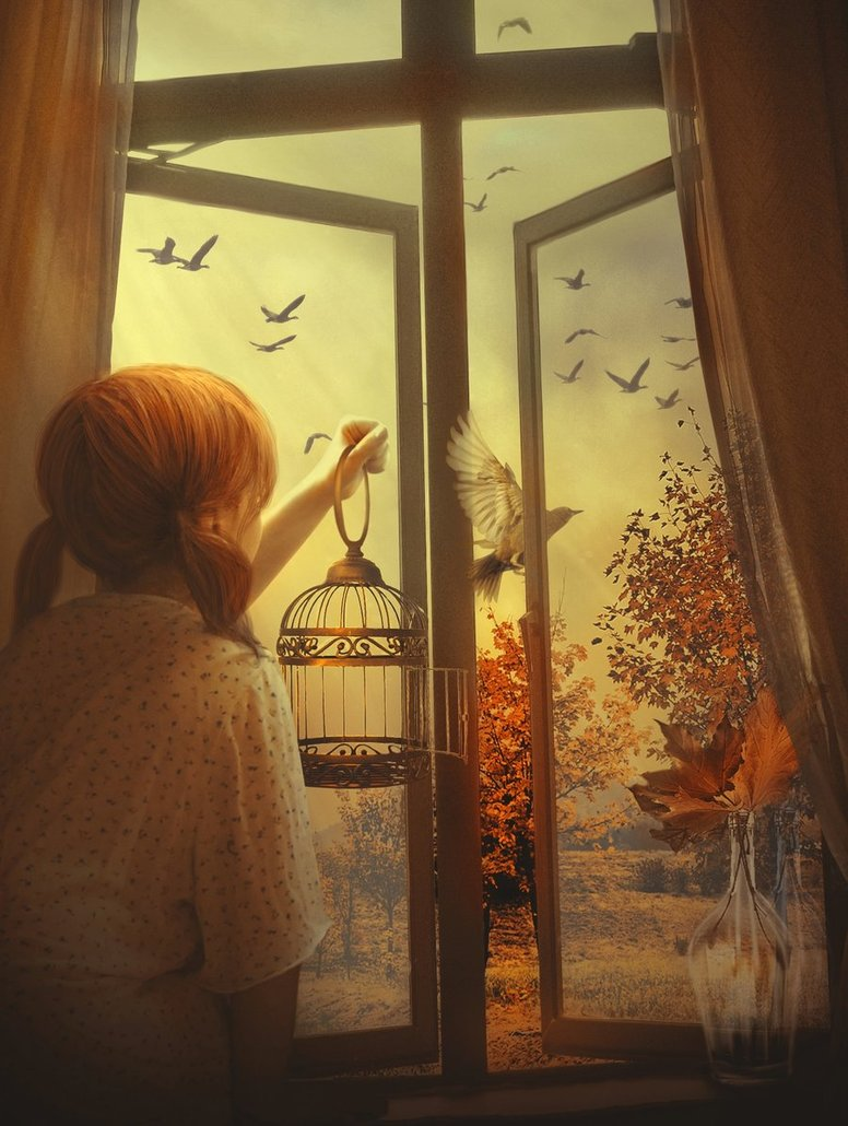 Рассказы девушка в окне 4 фотография