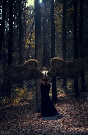 Фото Темный ангел в лесу, by Станислав Истратов (Flex)