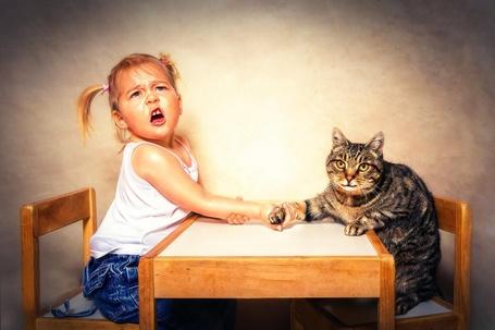 Фото Девочка и кот состязаются в армрестлинге, by Reto Imhof