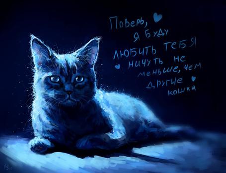 Фото Грустный котик (Поверь, я буду любить тебя ничуть не меньше, чем другие кошки), by AlaxendrA
