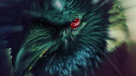 Фото Черный ворон с красным глазом из аниме Наруто / Naruto/