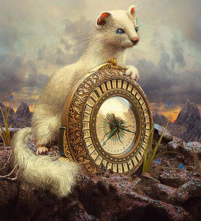 Фото Белая ласка с Золотым компасом (The Golden Compass by Philip Pullman / Северное сияние, роман Филипа Пулмана), by 25kartinok