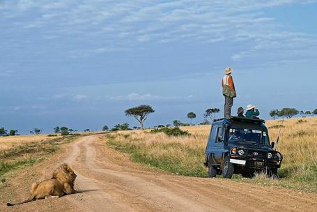 Фото Сафари в Африке, публикация в журнале Africa Geographic