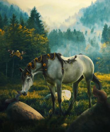 Фото Белочка целует красивую лошадь, by Hioderro