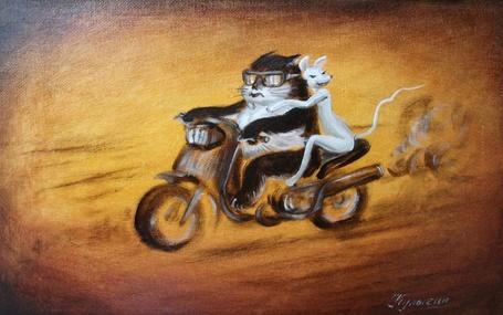 Фото Кот и кошка катаются на мотоцикле, художник Николай Кулыгин