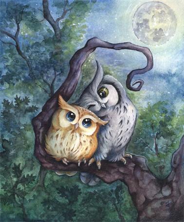 Фото Влюбленные совы сидят на ветке дерева, by kiriOkami