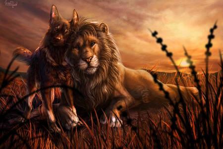 Фото Лев и собака в дружеском обьятии лапами на фоне заходящего солнца, by WolfRoad