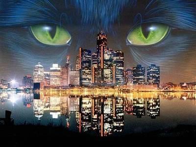 Фото Глаза кошки над ночным городом