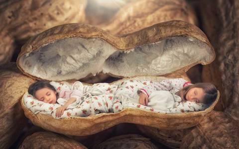 Фото Девочки спят в скорлупе арахиса, by John Whilelm