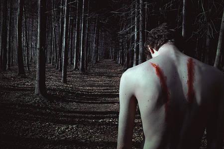 Фото Парень без крыльев в лесу, by ElenaHelfrecht