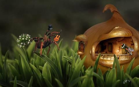 Фото Паук с гитарой и цветами идет на чаепитие к мухе в домик из луковицы, by Avi li