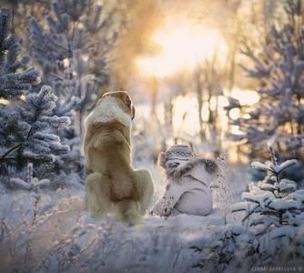 Фото Ребенок с собакой в лесу зимой, автор Elena Shumilova
