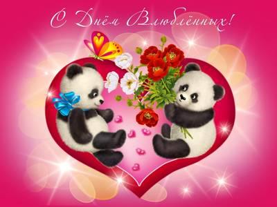 Фото Влюбленные панды в сердечке (С Днем Влюбленных!)