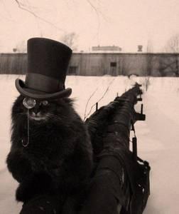 Фото Кот в шляпе и пенсне сидит на трубе