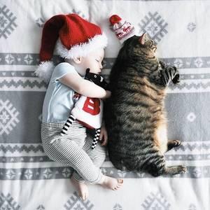 Фото Маленький ребенок и большой кот спят рядом
