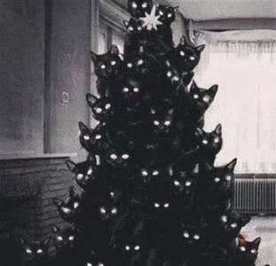 Фото Новогодняя елка из черных котов