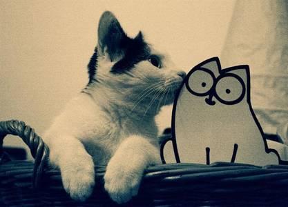 Фото Кот и кот Саймон