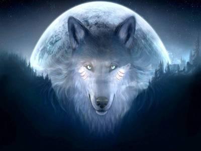 Фото Волк на фоне огромной луны
