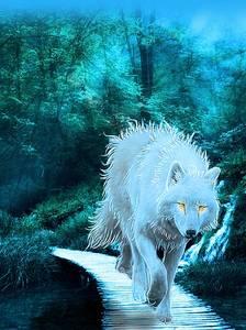 Фото Белый волк с желтыми глазами, идет по настилу через ручей, by Penguiduck