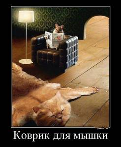 Фото Мышь сидит в кресле, читая газету, перед ней коврик (Коврик для мышки)