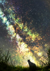 Фото Кошка сидит в траве на фоне ночного неба и млечного пути