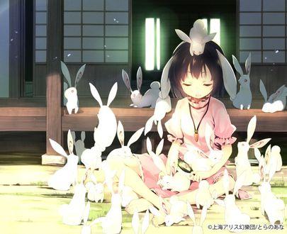 Фото Девочка в окружении кроликов