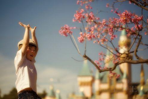 Фото Маленький мальчик улыбается, подняв руки вверх