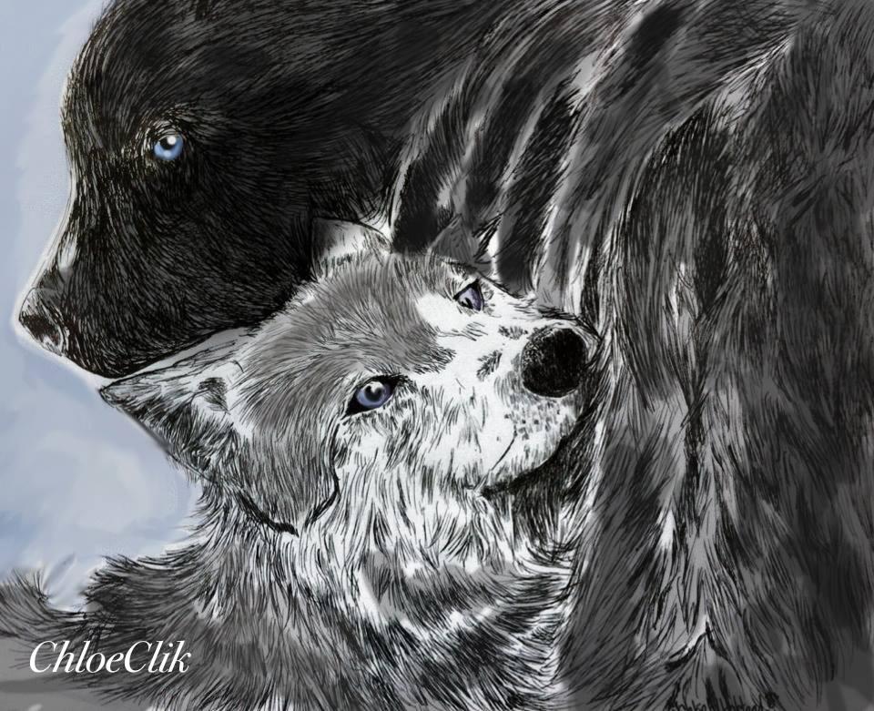 Волк и медведь открытки, днем