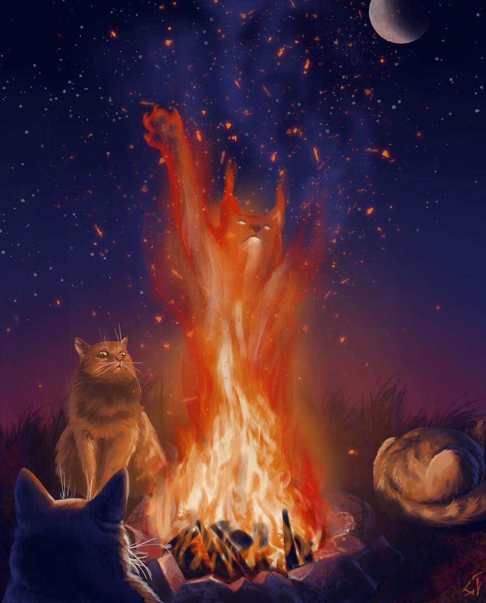Картинка кот огонь