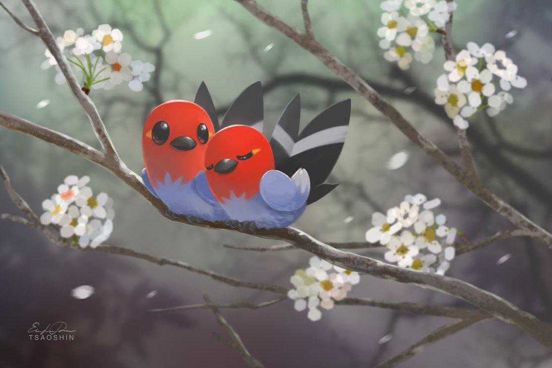 фото птицы на ветке цветущей
