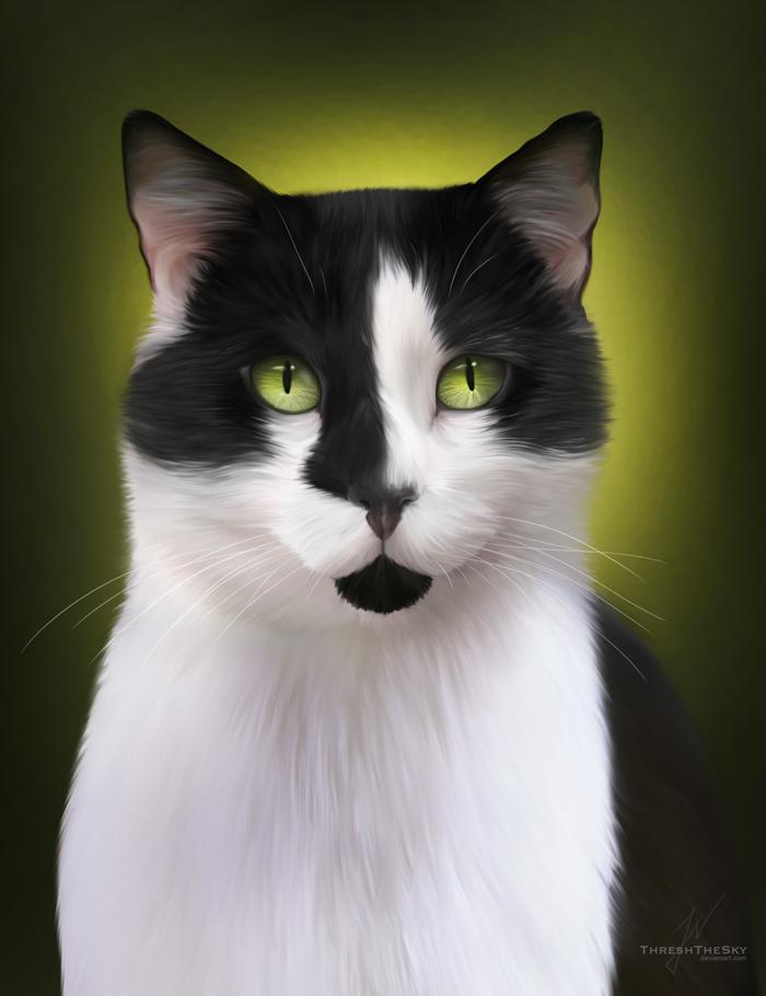этом черно-белые картинки кошек с зелеными глазами сообществе клуб