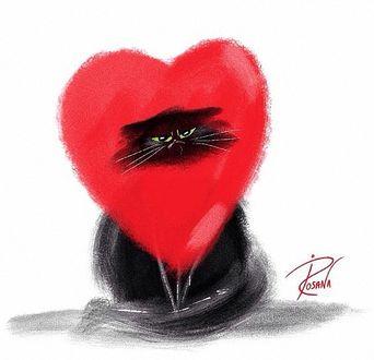 Фото Черный кот в красном сердечке, by Rosana Iarusso