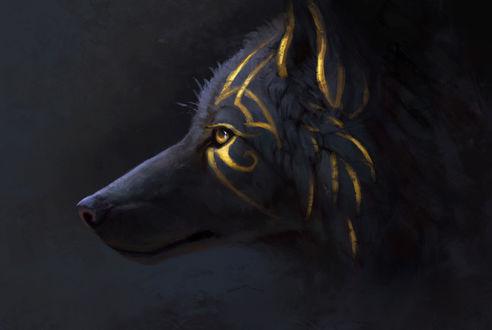 Фото Черный волк, шерсть которого разрисована золотыми полосами, by JadeMere