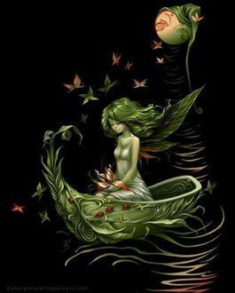 Фото Девушка в лодке из растений, ву Anna Ignatieva