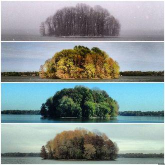 Фото Четыре времени года - зима, весна, лето, осень