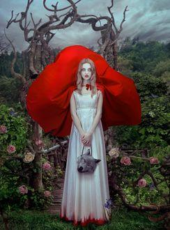 Фото Красная Шапочка / Red Riding Hood / by Natalie Shau