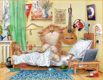 Фото Пушистый котенок проснулся и сидит на постели в окружении любимых игрушек, работа Алексея Долотова / Xenopus