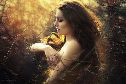 Фото Девушка с распущенными волосами в лучах солнца, в лесу