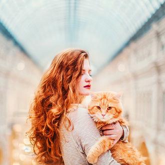 Фото Девушка держит на руках кошку, ву Kristina Makeeva