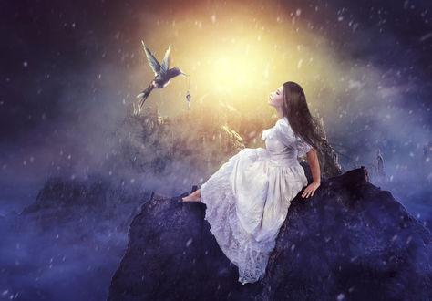 Фото Девушка сидит на камне перед птицей с ключом в клюве, by charmedy