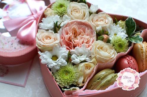 ���� ������� � ���� ������, ������ ������� �����: ����������, ����, ����, � �������� - �������� (Bloom Box)