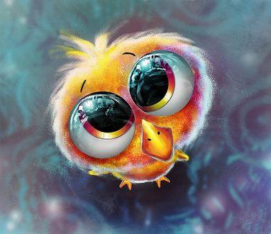 Фото Птенец с огромными глазищами смотрит вверх, by kikithemonkey