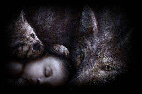 Фото Усыновленный волчицей мальчик Маугли спит, прижавшись к волчице и маленькому волчонку, by Wolf and Cub Drawing