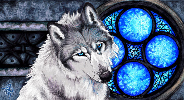 волк с синими глазами картинки продажа квартир