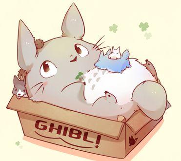 Фото Totoro / Тоторо, Chibi Totoro / Маленький Тоторо из аниме Мой сосед Тоторо / My Neighbor Totoro и щенок в картонной коробке